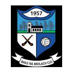 Ballinameela GAA Waterford