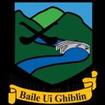 Ballygiblin GAA