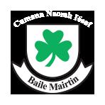 Ballymartin GAA