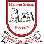 Ferns St Aidans