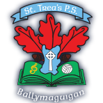 St.Trea's Primary School