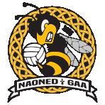 Nantes GAA
