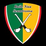 Newtownshandrum GAA