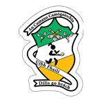 Offaly Camogie