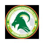Skerries Town FC