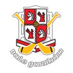 Ballygarvan GAA Club