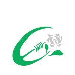 Tralee Rugby Club