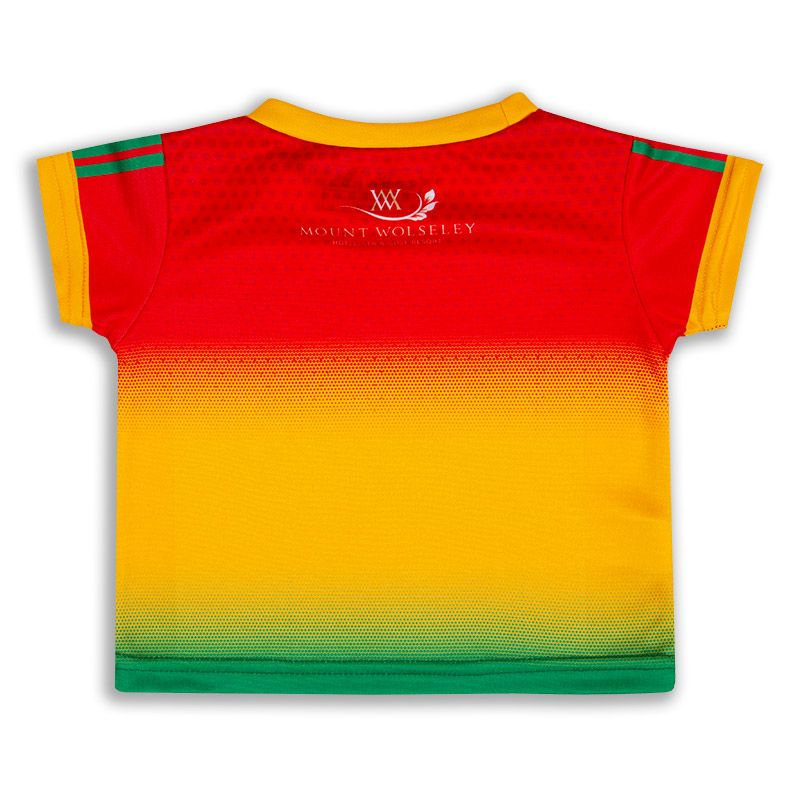 Carlow GAA Baby Home Jersey Personalised