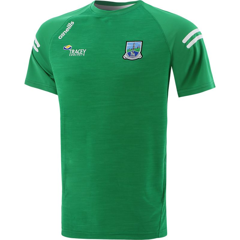 Fermanagh GAA Men's Voyager T-Shirt Green / White