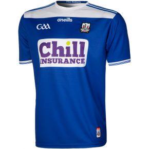 Cork GAA 2-Stripe Player Fit Alternative Goalkeeper Jersey