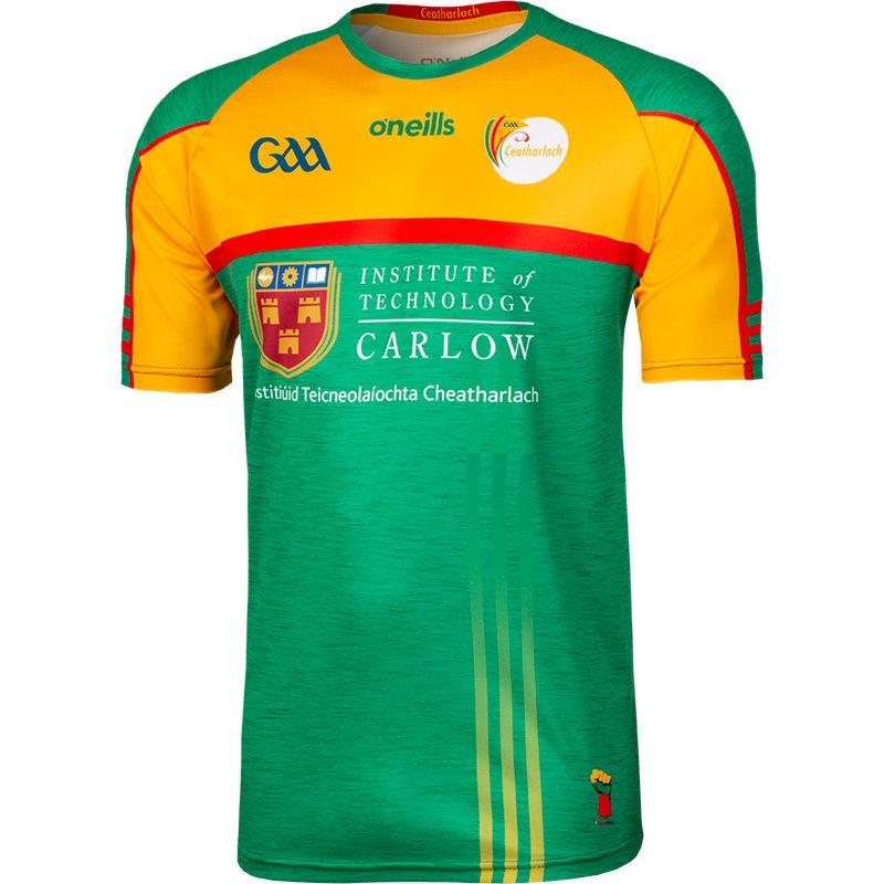 Carlow GAA Player Fit Away Jersey