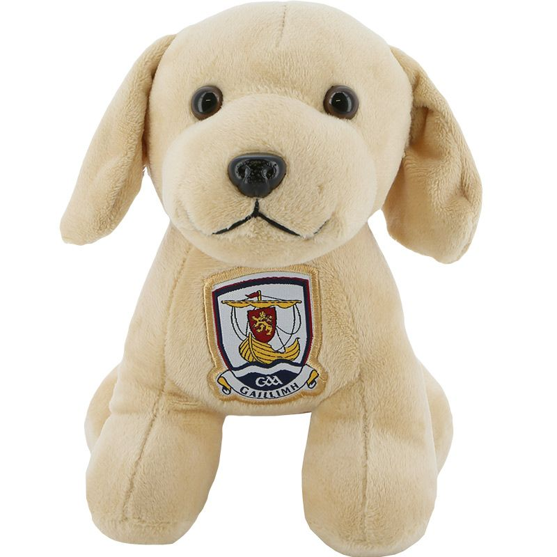 Galway GAA Springy Puppy