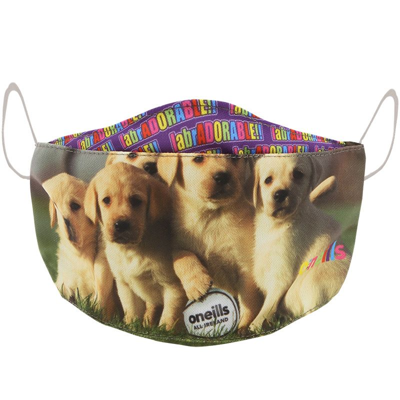 Labradorable Ploughing Championships Kids' Reusable Face Mask 2020