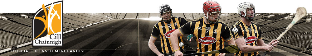 The Life of Brian: What Have Kilkenny Ever Done for Us?