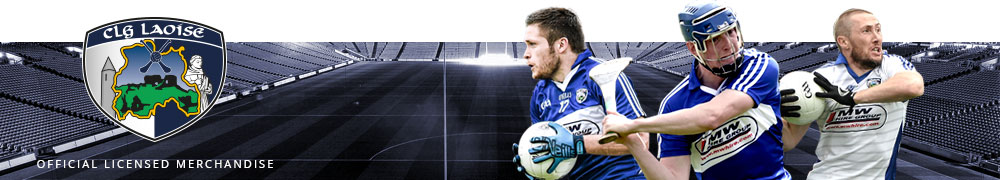 Magnificent Seven: Things Laois Gave the GAA