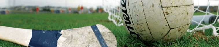 Leitrim and Warwickshire Hurling Against the Odds